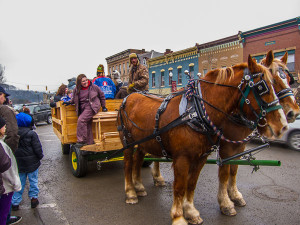 Horse-drawn-carriage-rides